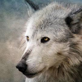 Steve McKinzie - Wolf on Canvas