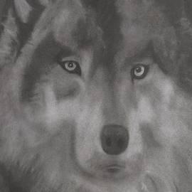 Renee Michelle Wenker - Wolf