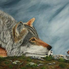 Sid Ball - Wolf