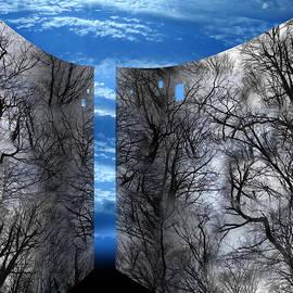 Florin Birjoveanu - Wood Space Blue