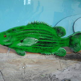 Wooden Bass Fish by Val Oconnor