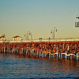 Wooden Pier in San Clemente CA by Richard Cheski