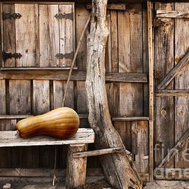Carlos Caetano - Wooden shack