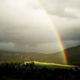 David Broome - Wyoming Rainbow