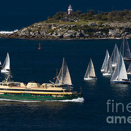 Yachts and the famous Manly Ferry on Sydney Harbour with South Head behind by David Hill