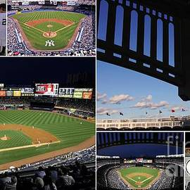 Allen Beatty - Yankee Stadium Collage