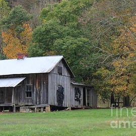 Ye old cabin in the fall by Jennifer E Doll