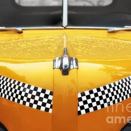 Nikolyn McDonald - Yellow Cab #2