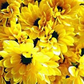 Yellow Daisies by Florian Rodarte