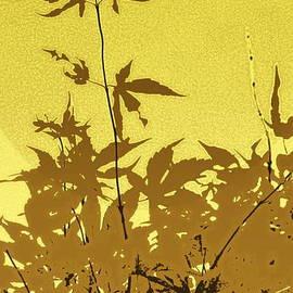 Yellow Haiku by Kathy Barney