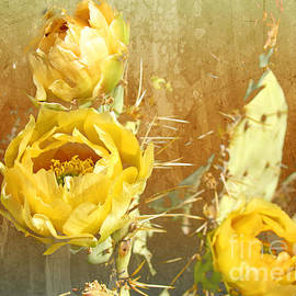 Yellow Prickly Pear Cactus by Beverly Guilliams