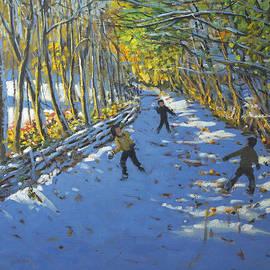 Andrew Macara - Yellow trees  Allestree Park