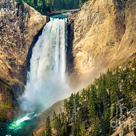 Robert Bales - Yellowstone Lower Waterfalls