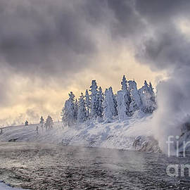 Priscilla Burgers - Yellowstone Winter Wonderland