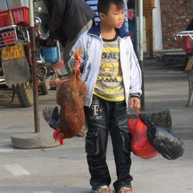 Young boy carrying a dead chicken to school by Thomas Marchessault