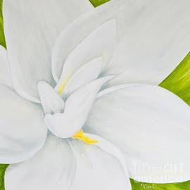 Mary Deal - Young Gardenia