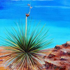 Jennifer Hillman - Yucca