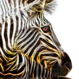 Zebra Crossing by Michael Durst