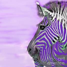 Zebra Purple Mist by Saundra Myles