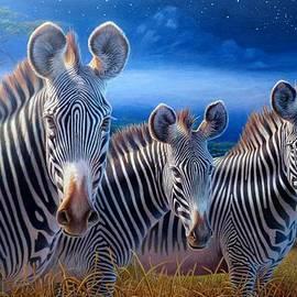 Hans Droog - Zebras