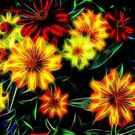 Nick Kloepping - Zinnias with Zest