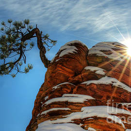 Zion National Park Sacred Earth 2 by Bob Christopher