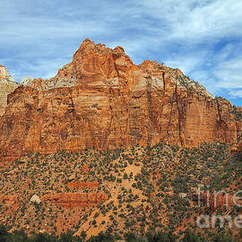 Zion Walls by Robert Bales
