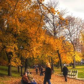 Joann Vitali - Boston Common