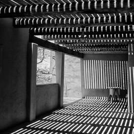 Tom Singleton - Desert Light and Shadows