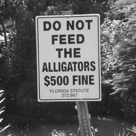 Val Oconnor - Do Not Feed The Alligators