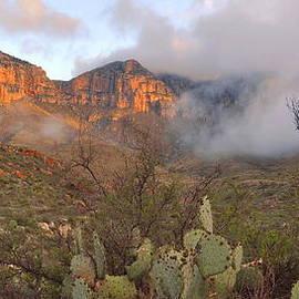 Stephen  Vecchiotti - El Capitan At Sunrise