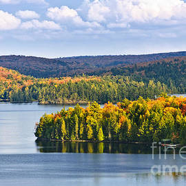 High view of fall forest and lake by Elena Elisseeva