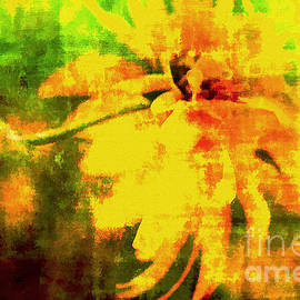 Floral Abstract  by Elaine Manley