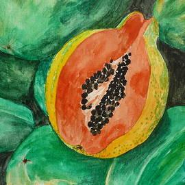 Estephy Sabin Figueroa - Fresh Papaya for Sale