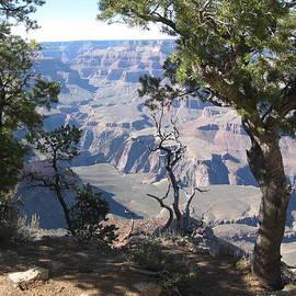 Valerie Smith - Grand Canyon