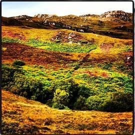 Highlands Colors