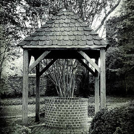 Steven Ainsworth - Old Water Well