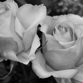 Bruce Bley - Roses in Black and White