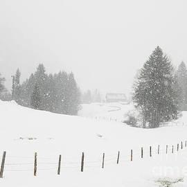 Matthias Hauser - Winter landscape
