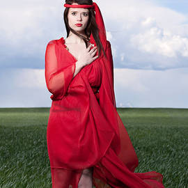 Woman In Red Series by Cindy Singleton