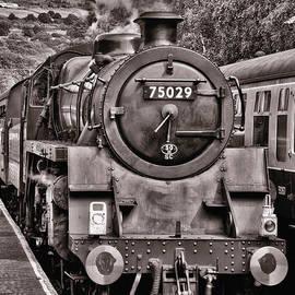 Trevor Kersley - The Train