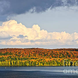 Fall forest and lake with dramatic sky by Elena Elisseeva