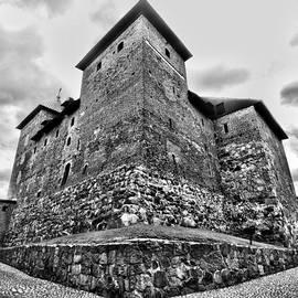 The Castle of Tavastehus by Jouko Lehto