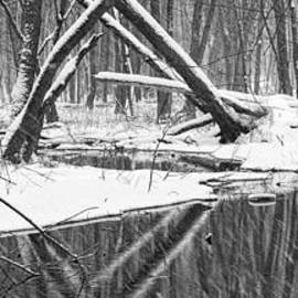 Randall Nyhof - A black and white panoramic photo of a stream in a winter snow storm