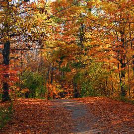 James Hammen - A Hikers Dream