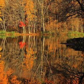 Karol Livote - A Reflection of October