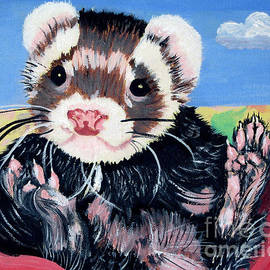 Adorable Ferret by Phyllis Kaltenbach