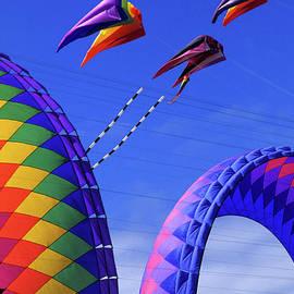 Go Fly A KIte 8 by Bob Christopher
