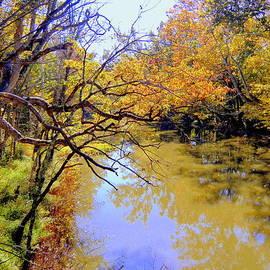 Alum Creek by Mindy Newman