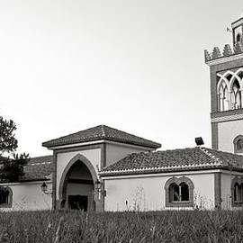 Tom Gowanlock - Andalucian mosque